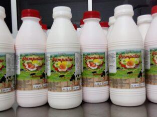 Iogurte Morango Pampalac